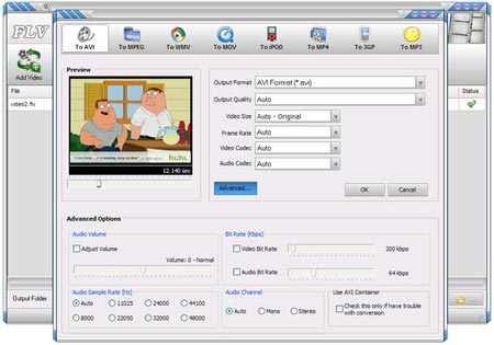Portable FLV Converter Screenshot